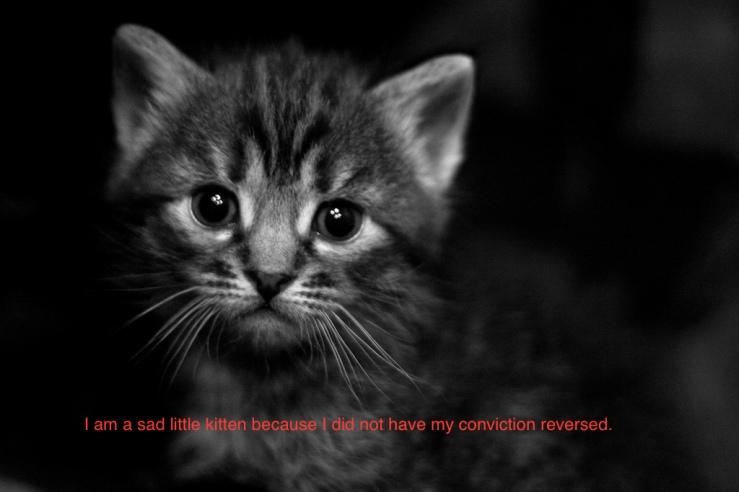 Sad kitten.jpg